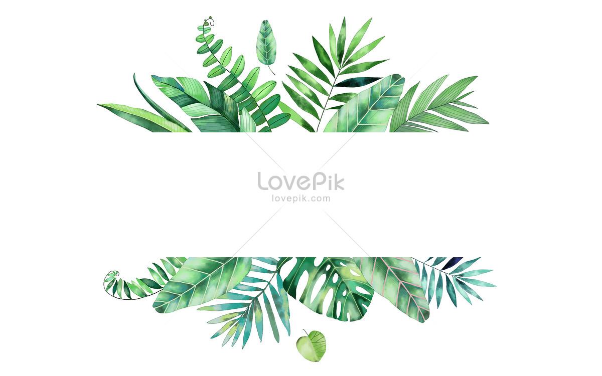 水彩热带叶子背景图片素材编号400119057_prf高清图片