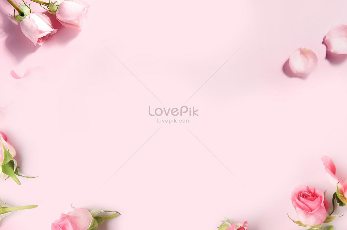 粉色鲜花留白背景图片素材编号400179017_prf高清图片