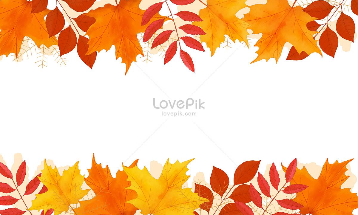 秋天手绘枫叶背景