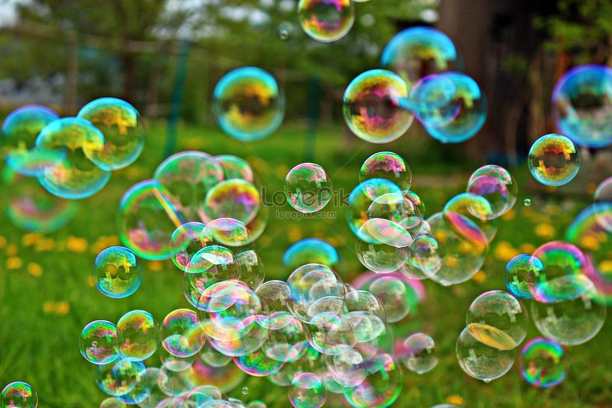 草地上的彩色泡泡图片素材编号500368378_高清图片__.