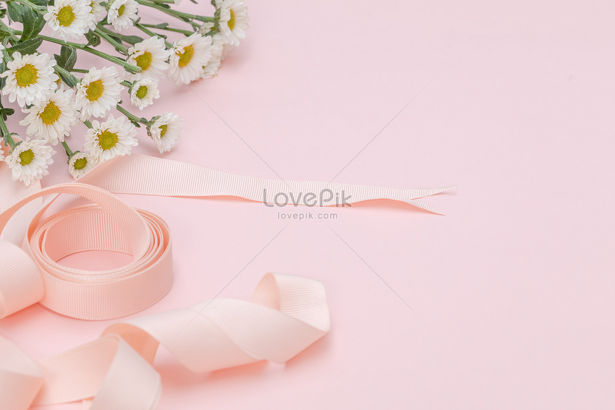 粉色雏菊丝带背景元素留白图片素材编号500448696_prf