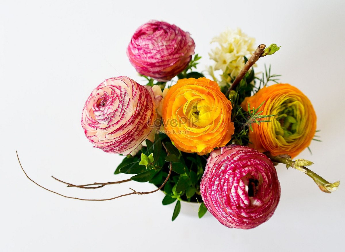 A Beautiful Bouquet Of Flowers Photo Imagepicture Free Download