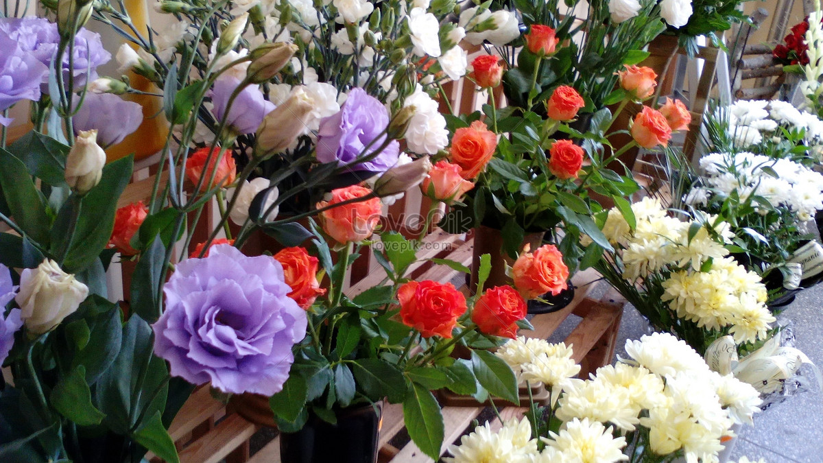 A Beautiful Flower Shop Photo Imagepicture Free Download