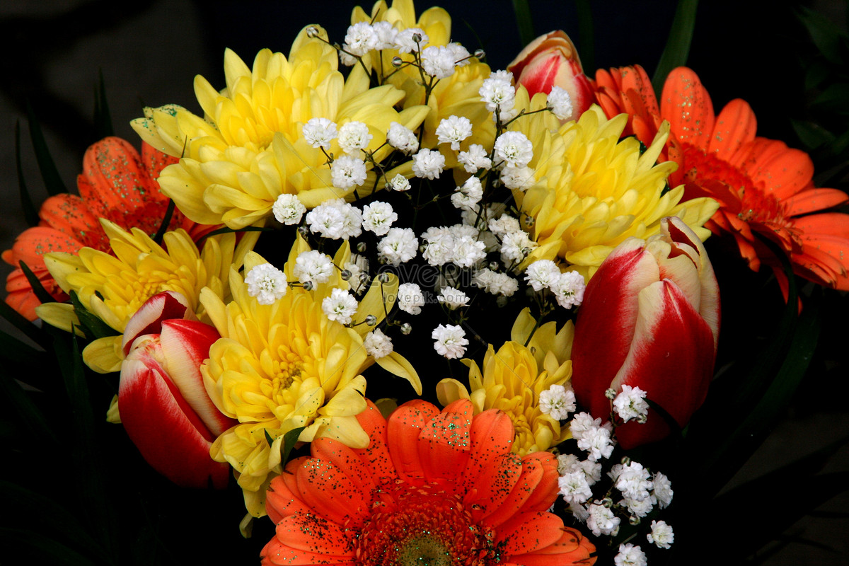 A Beautiful Bunch Of Flowers Photo Imagepicture Free Download