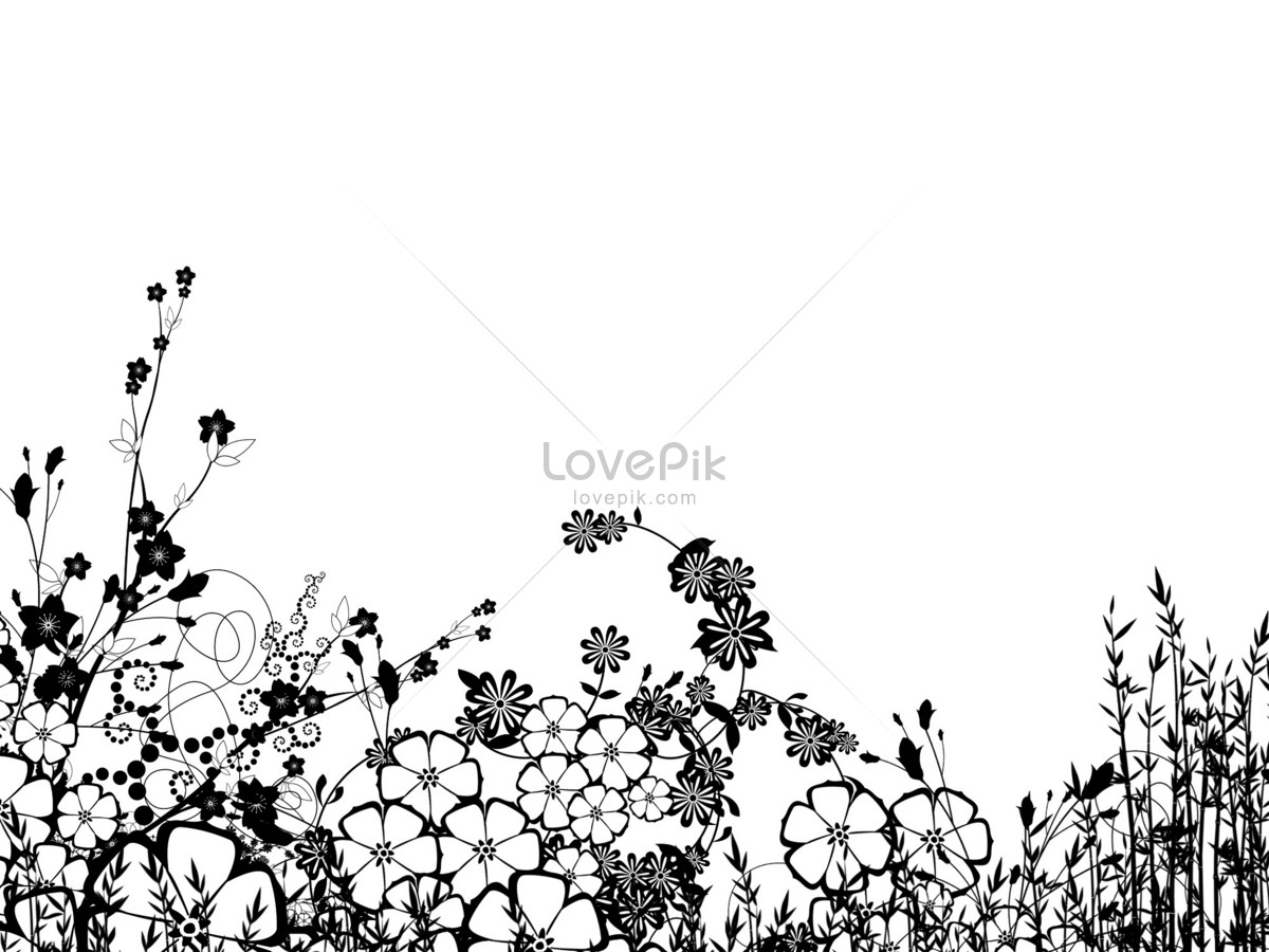 A Black And White Flower With Simple Lines Photo Imagepicture Free