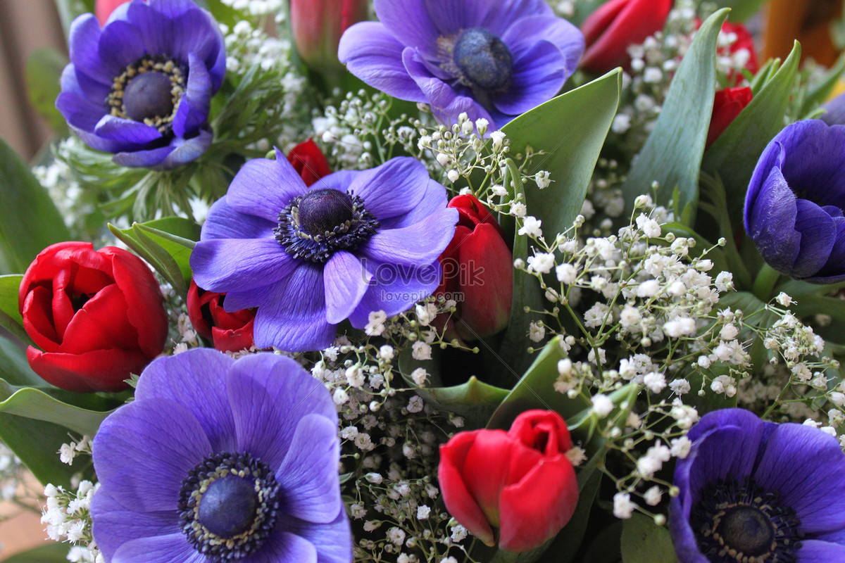 A beautiful bouquet of flowers photo imagepicture free download a beautiful bouquet of flowers izmirmasajfo