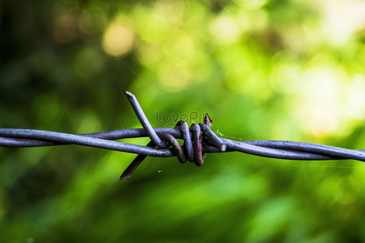 A twisted steel wire photo image_picture free download ...