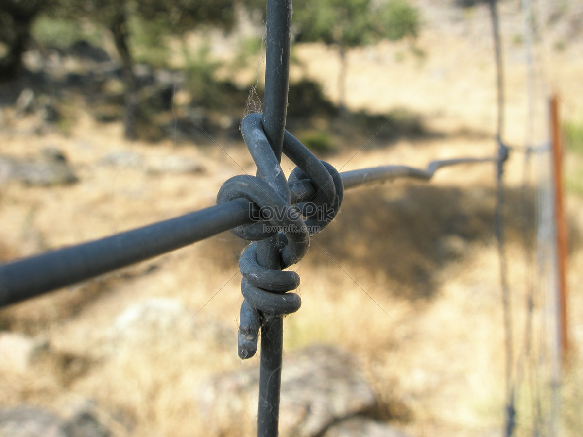 A tightly twisted wire photo image_picture free download ...