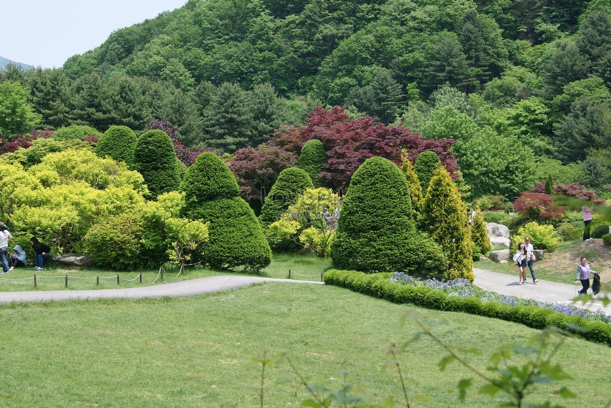 A beautiful flower garden photo imagepicture free download a beautiful flower garden izmirmasajfo