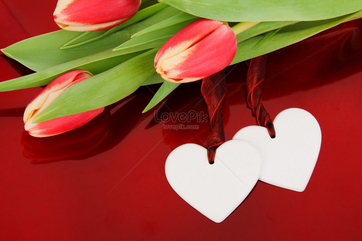 Two Hearts And Flowers Photo Image Picture Free Download