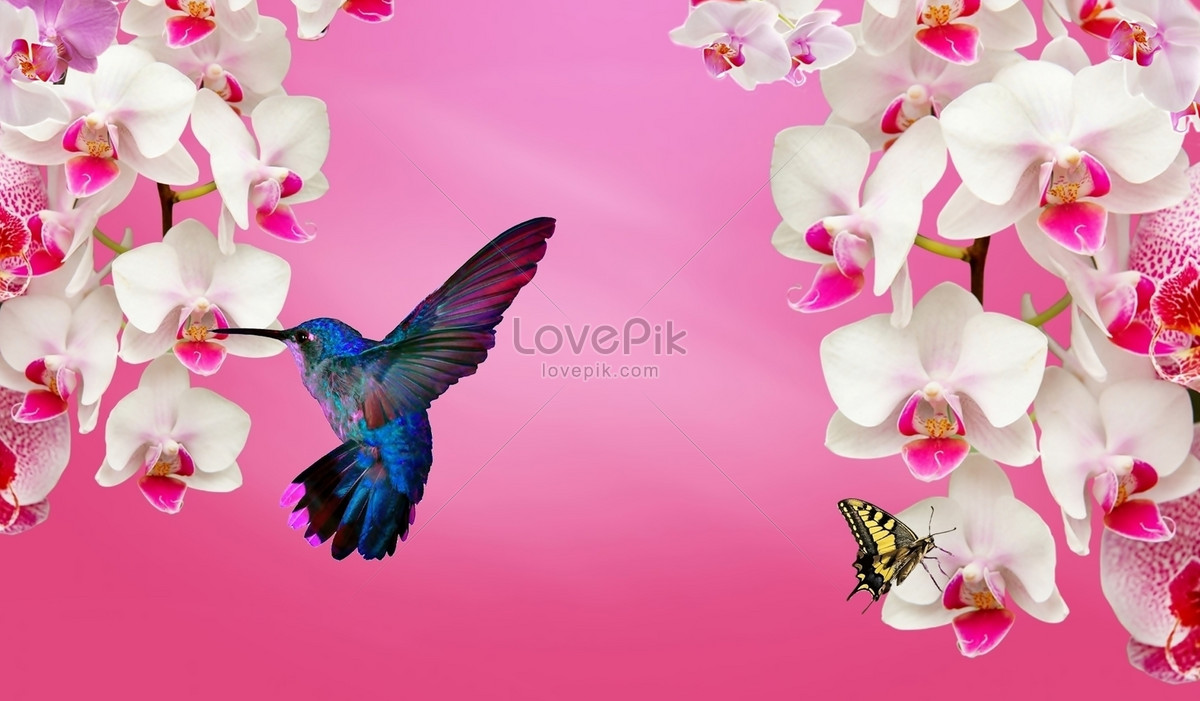 Beautiful And Bright Flowers Photo Imagepicture Free Download