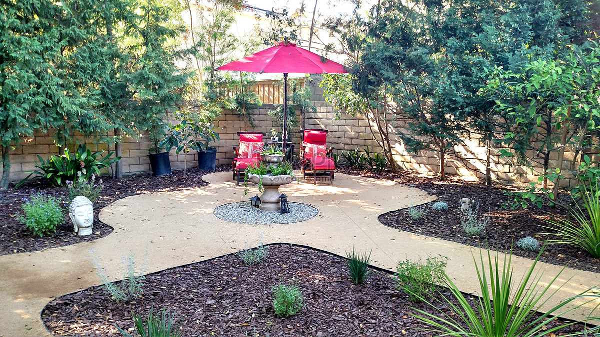 drought tolerant backyard design bark plants and weathered gra - Drought Tolerant Backyard Design Bark Plants And Weathered Gra Photo