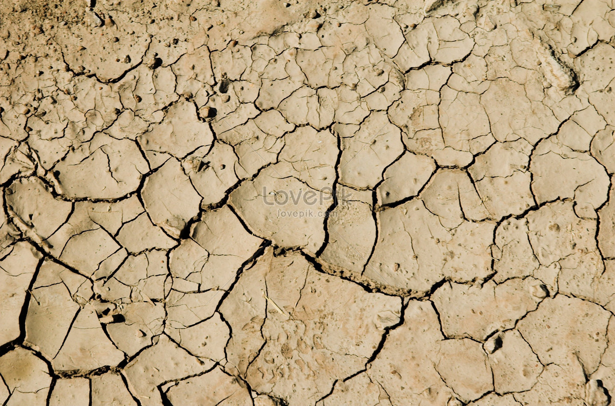 Dry Soil Texture Like Desert Photo Image Picture Free