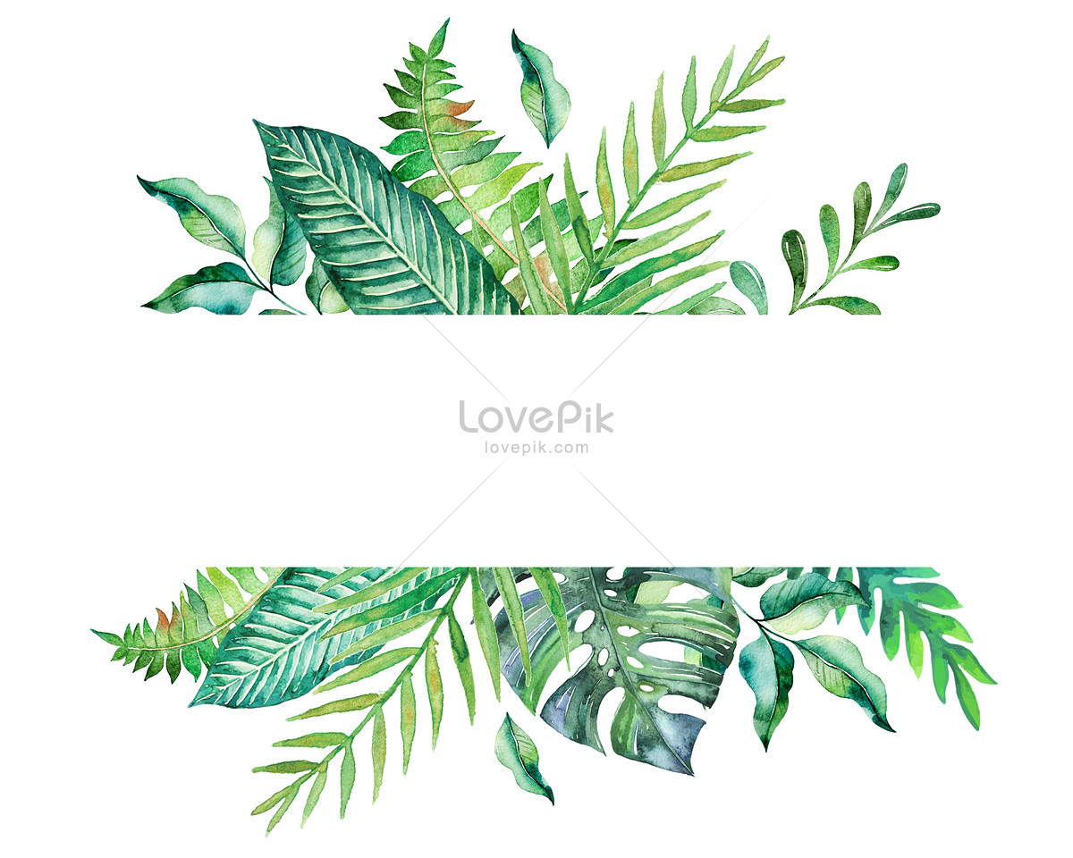 watercolor tropical leaf pattern illustration image Science Clip Art Black and White science clipart pictures