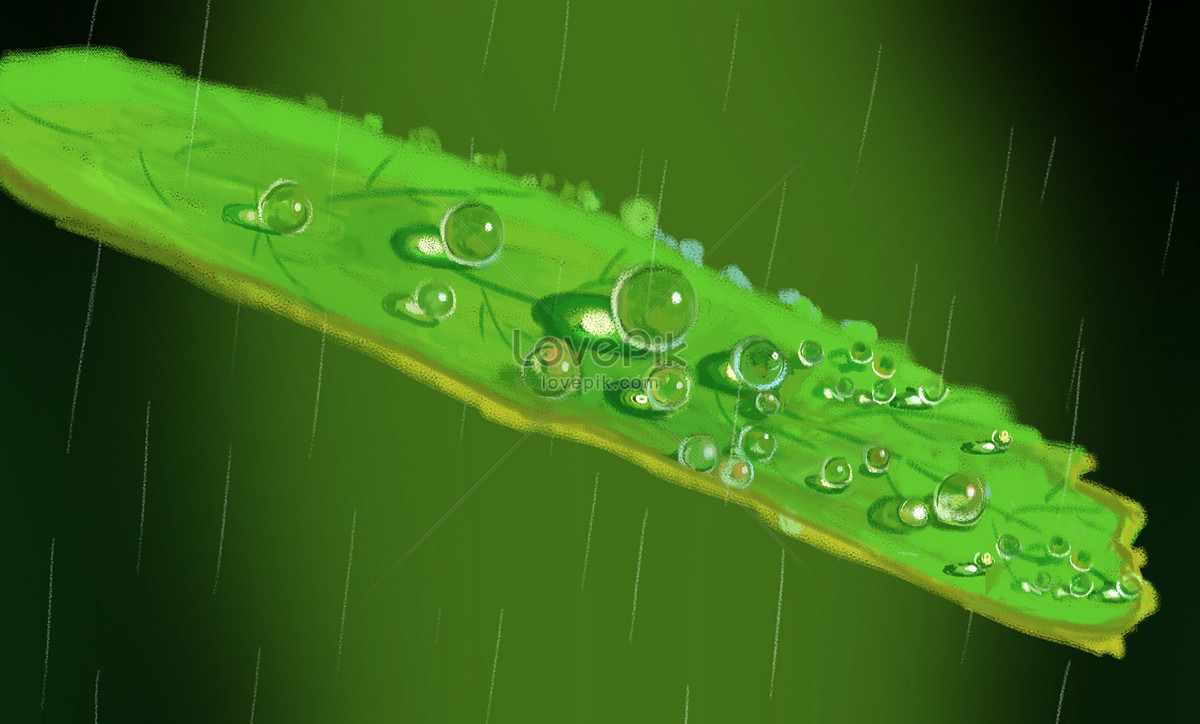 Hujan Gambar Unduh Gratisimej 400101025format Psdmylovepikcom
