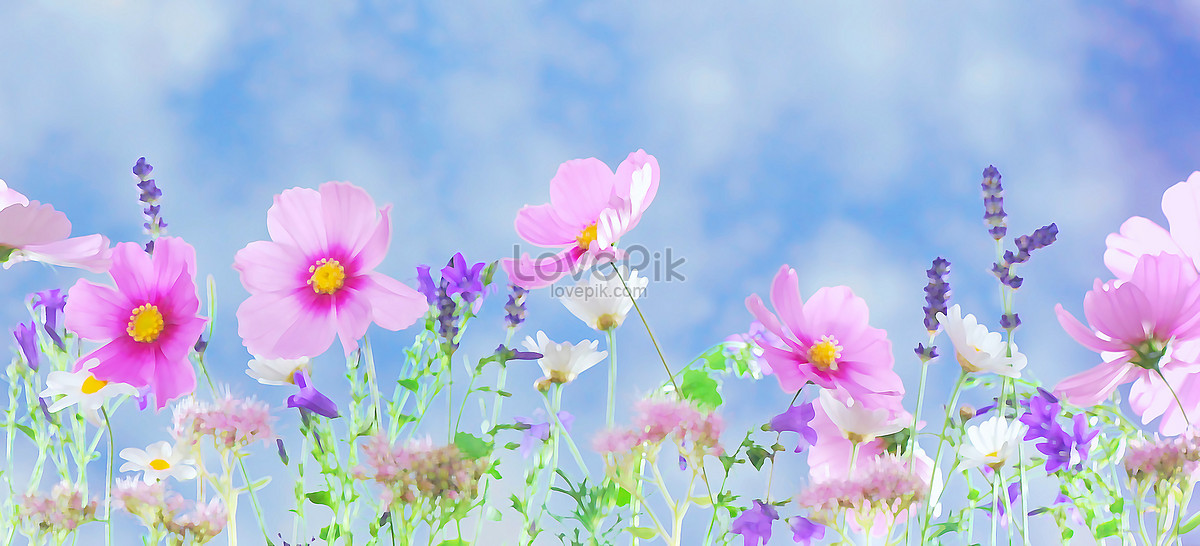 small fresh flower scenery photo image picture free download