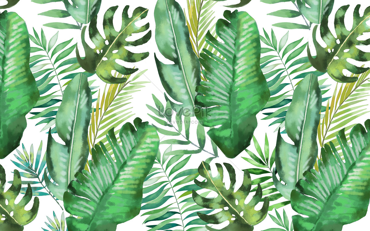 Watercolor Background Of Tropical Leaves Photo Image