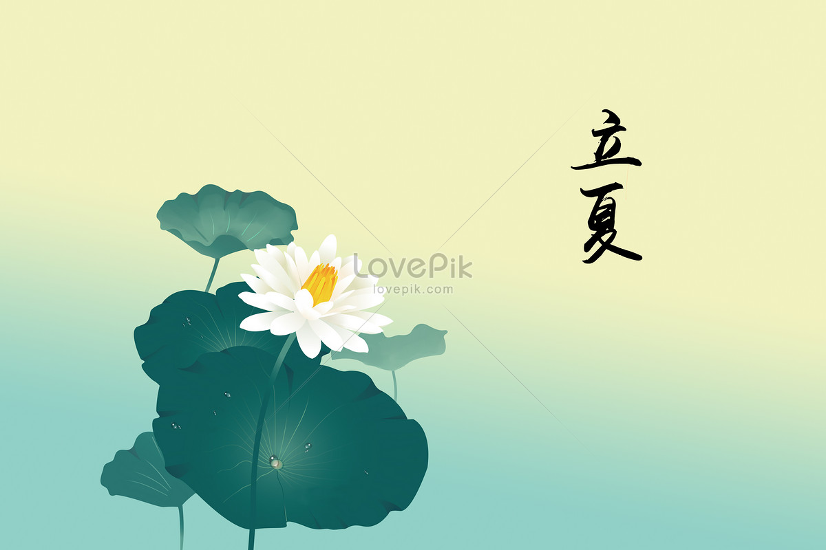 Hand Painted Lotus Flower In Lixia Photo Imagepicture Free Download