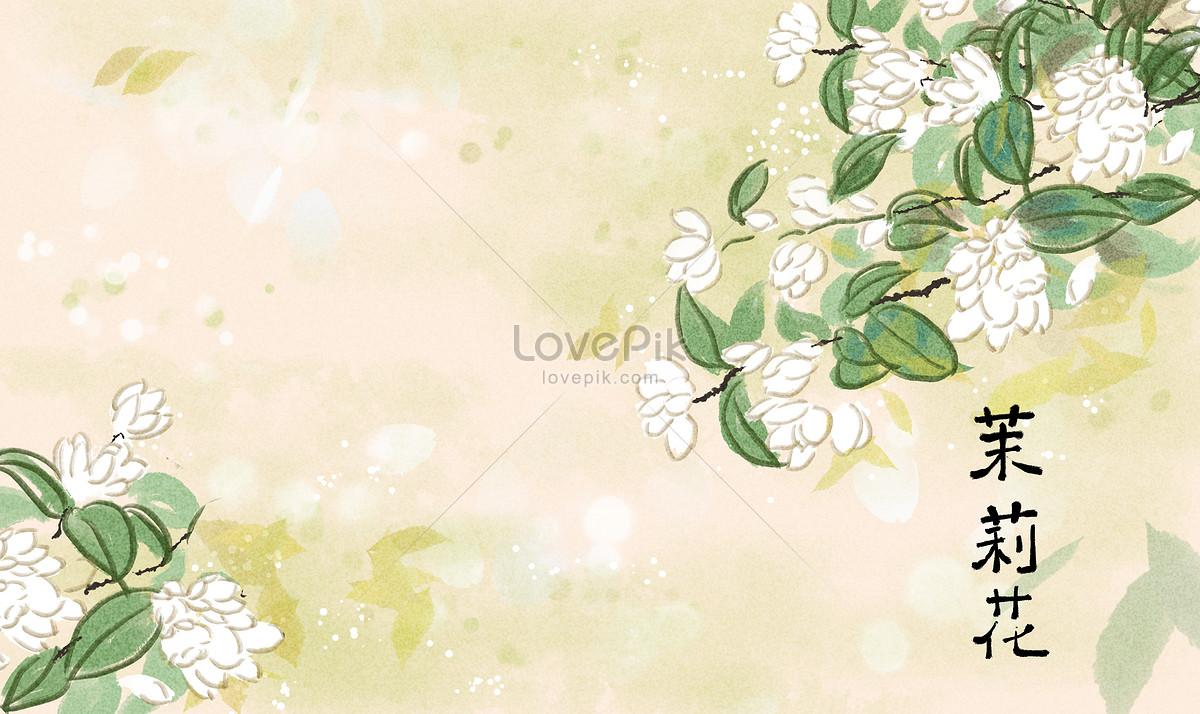Chinese Jasmine Flower Illustration Illustration Image Picture Free