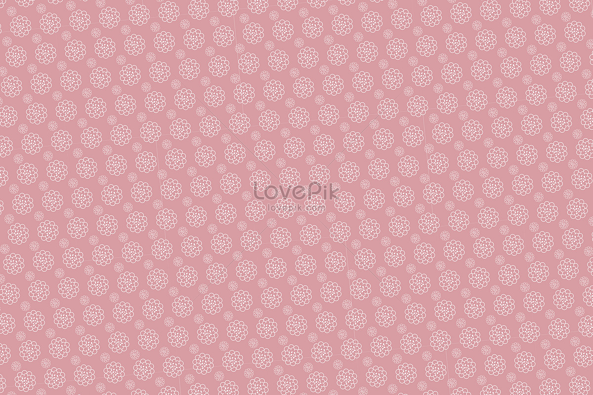 Light Pink Flower Wallpaper Photo Imagepicture Free Download