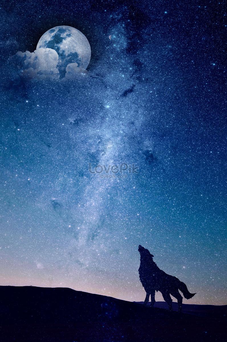 夜空の下でオオカミのシルエット
