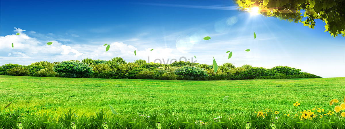 Banner high definition big picture background backgrounds ...