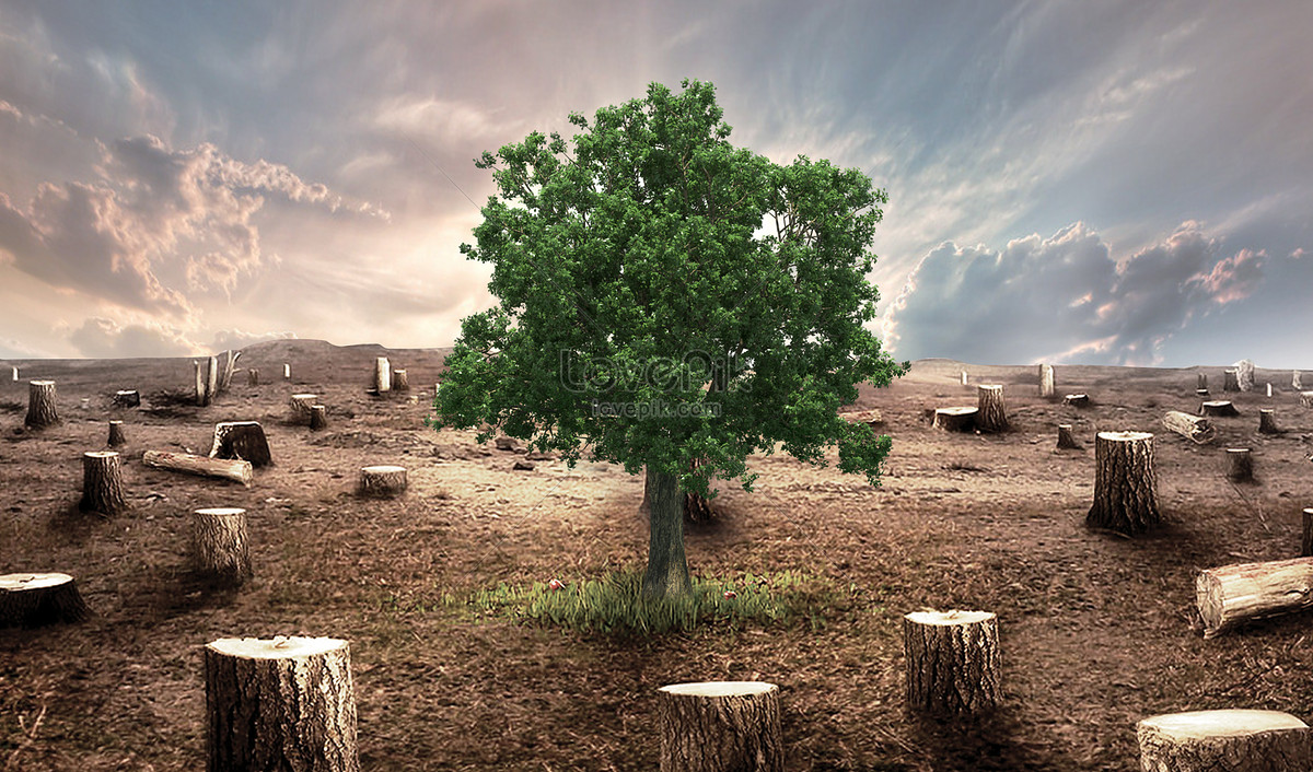 protect trees to prohibit deforestation creative image