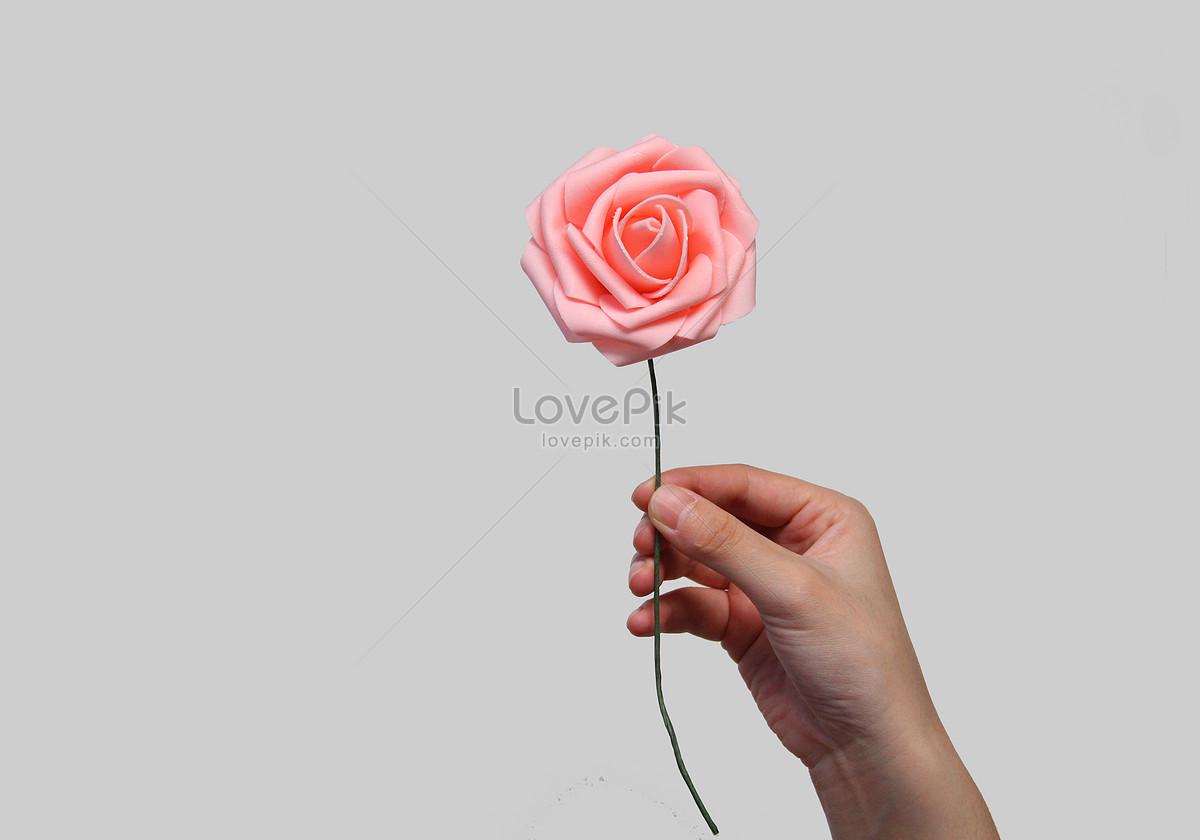 Tangan Memegang Bunga Latar Belakang Bahan Bunga Gambar Unduh