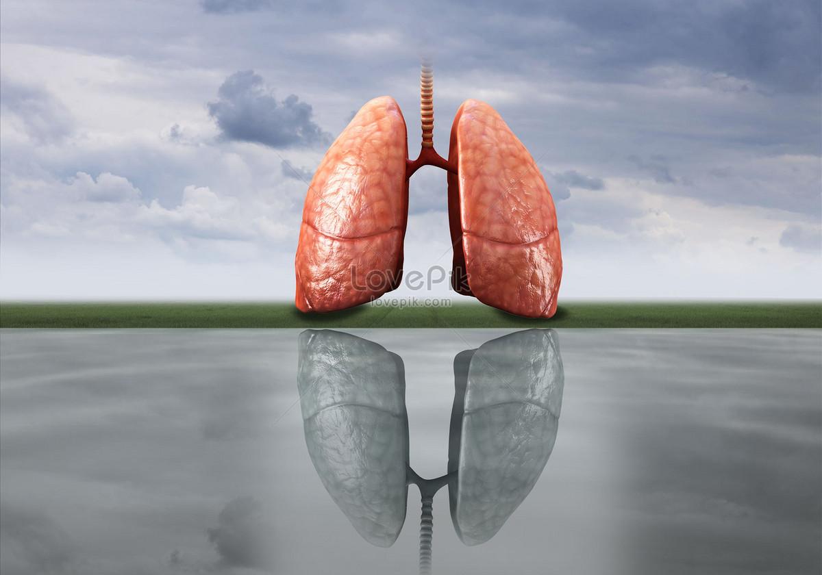 sức khỏe của phổi và ung thư phổi sơ đồ mới
