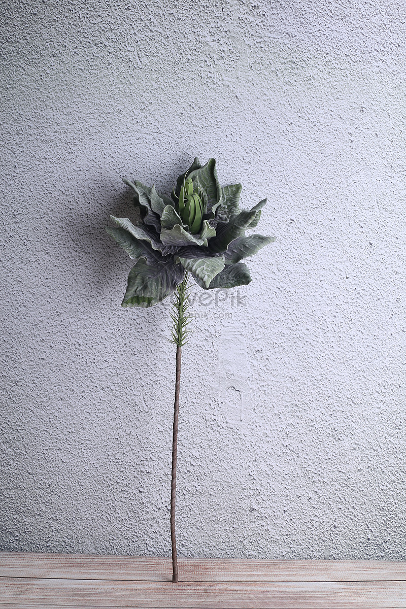 Single Branch Material Artificial Flowers Photo Imagepicture Free