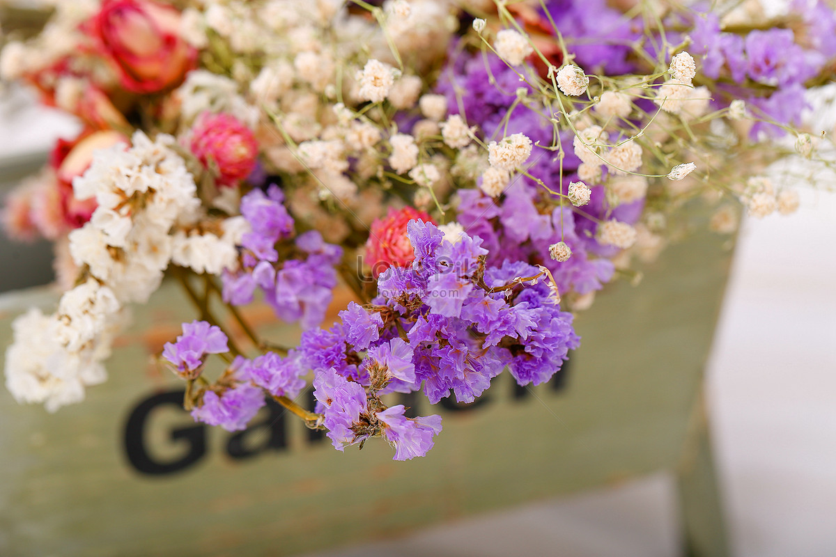 Flower Scene Map Photo Imagepicture Free Download 500581662lovepik