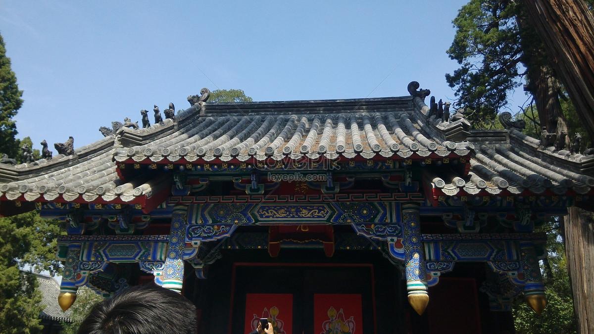 Shandong weifang
