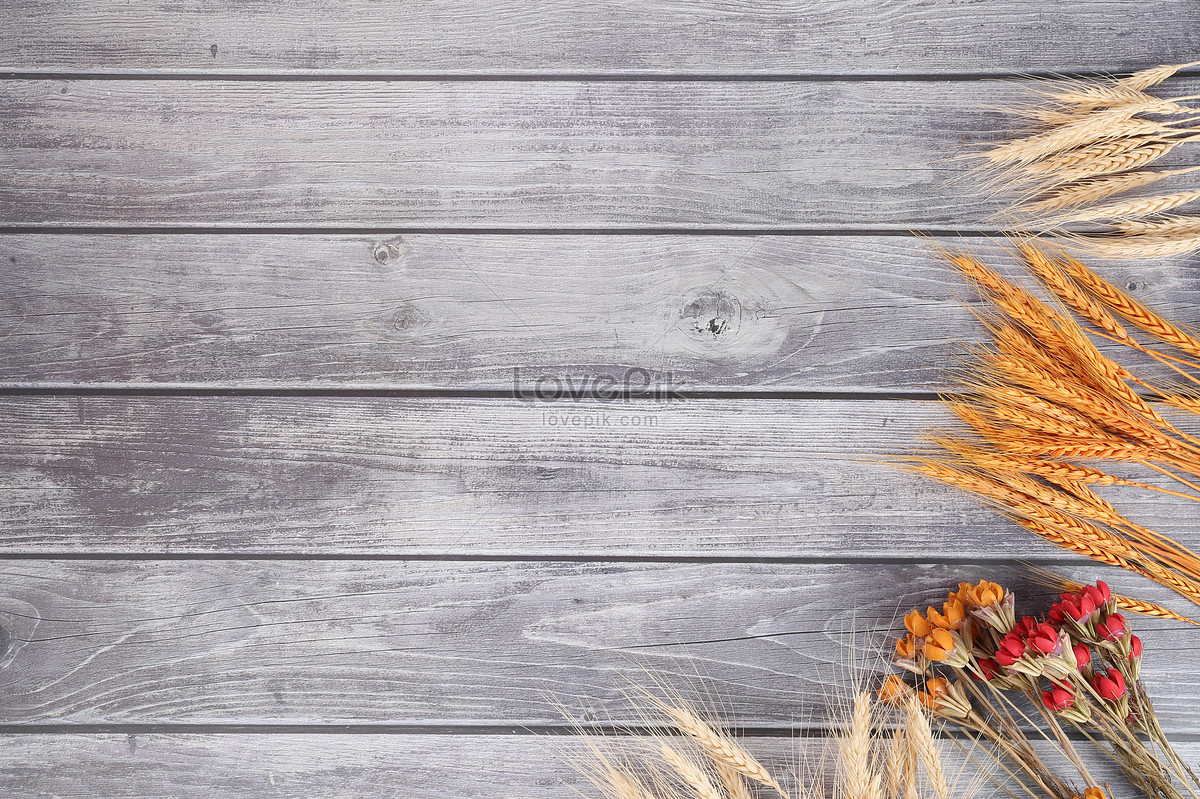 wood grain background and dry flowers photo image picture free